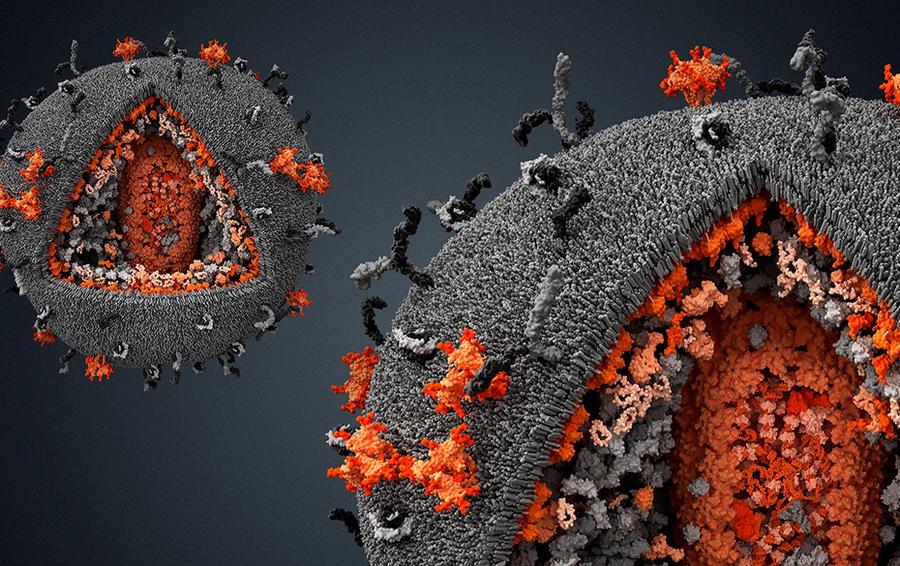 Теле медицина рассматривается как ключевой инструмент борьбы с COVID-19
